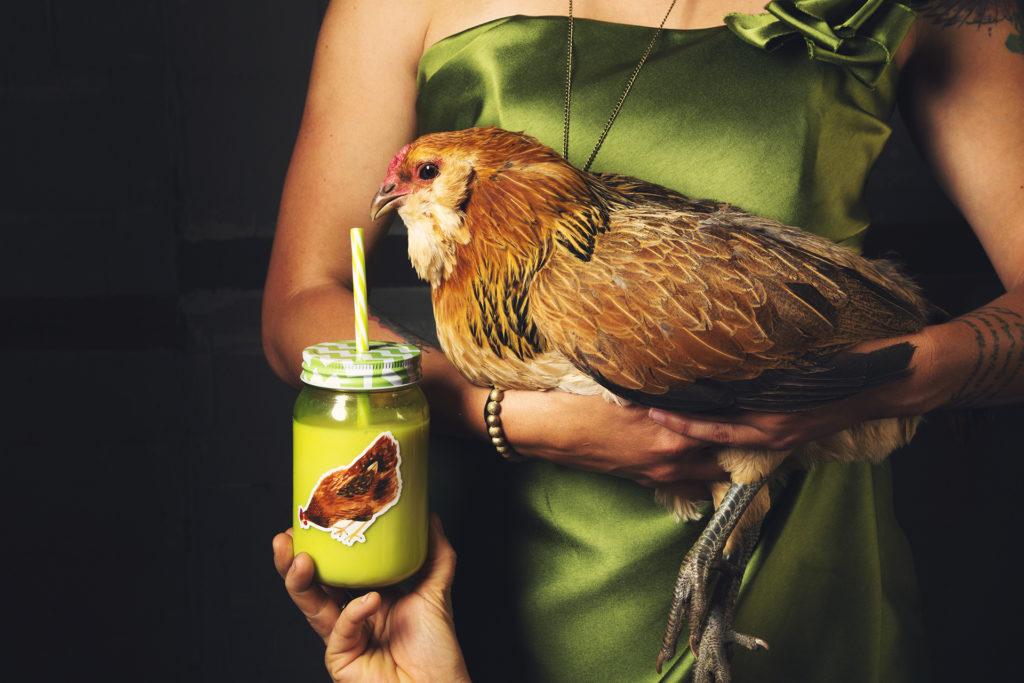 Iemand knuffelt een kip en voert de kip een groene smoothie.